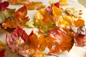 beeswax-leaves-tutorial-5-of-5